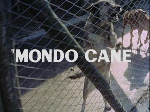 Mondo Cane di Jacopetti e Prosperi: Il Dvd Mustang Entertainment