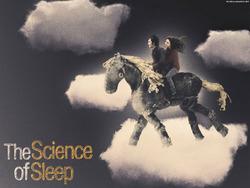 the-science-of-sleep-wallpaper-1.jpg
