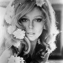 Nancy Sinatra: the voice