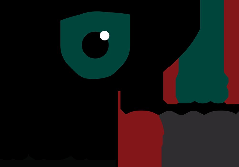 indie-eye-doc-logo-rgb