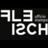 Fleisch Agency