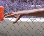 Bon Iver – AUATC, il videoclip di Aaron Anderson & Eric Timothy Carlson