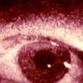 occhio_rec.jpg